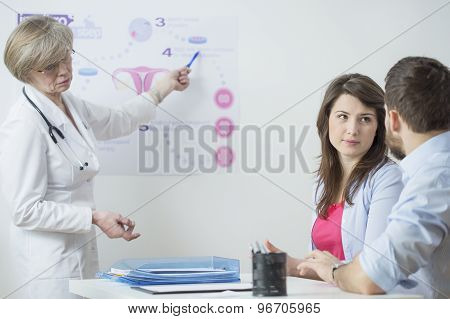 Gynecologist Using In Vitro Scheme