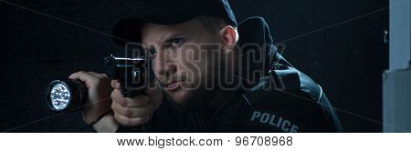 Professional Police Officer