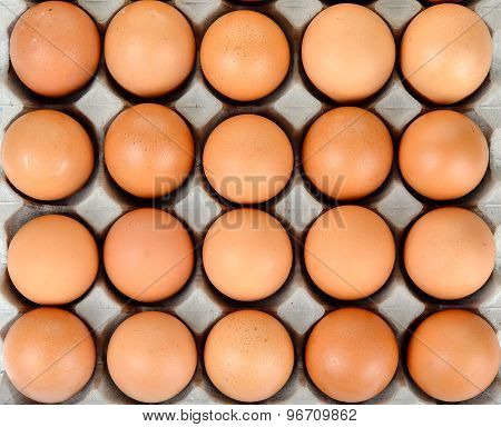 Close Up Egg In Packet Background Texture