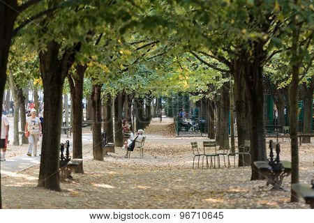 PARIS FRANCE - SEPTEMBER 8 2014: People relax in Luxembourg Gardens in Paris France. Luxembourg area is popular among tourists in Paris the most visited city worldwide.