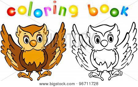 Funny Cartoon Owl Coloring Book