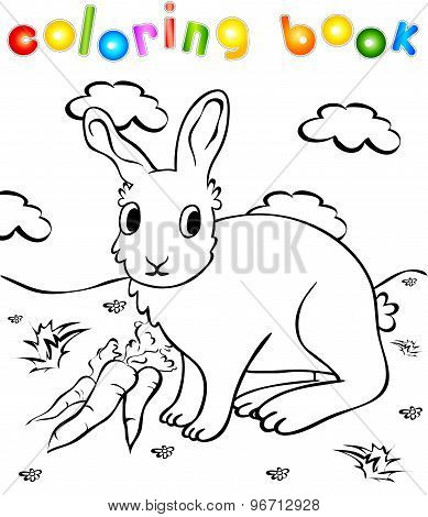 Funny Rabbit With Carrots Coloring Book