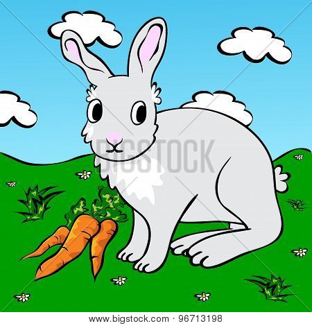 Funny Rabbit With Carrots