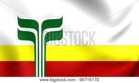 Flag Of Franco-manitobans, Canada.