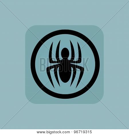 Pale blue spider sign