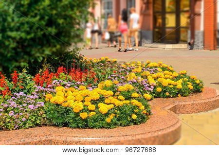 Flower beds on pedestrian street