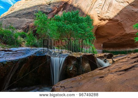 Beautiful Cascade In Coyote Gulch