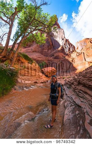 Girl Hiker Backpacker In Coyote Gulch Escalante