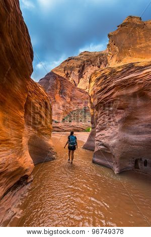 Girl Hiker In Coyote Gulch Escalante