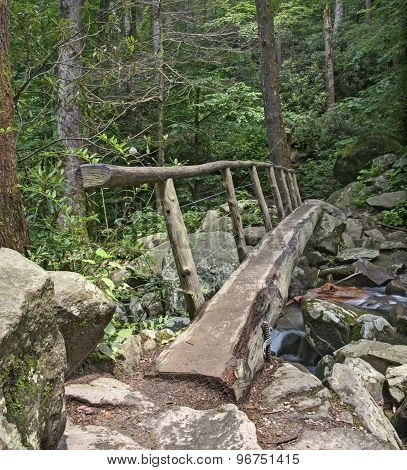 Log Footbridge, Great Smoky Mountains National Park