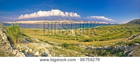 Island Of Pag Metajna Bay Panorama