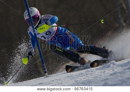 GARMISCH PARTENKIRCHEN, GERMANY. Feb 19 2011: Frida Hansdotter (SWE) competing in the women's slalom race , at the 2011 Alpine skiing World Championships