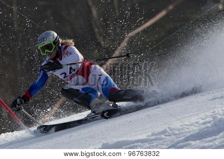 GARMISCH PARTENKIRCHEN, GERMANY. Feb 19 2011: Denise Feierabend (SUI) competing in the women's slalom race , at the 2011 Alpine skiing World Championships