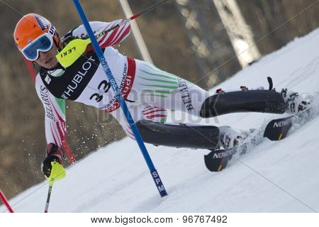 GARMISCH PARTENKIRCHEN, GERMANY. Feb 14 2011: Yuri Danilochkin (BLR) competing in the men's slalom at the 2011 Alpine skiing World Championships