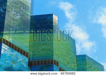 Green City,concepts