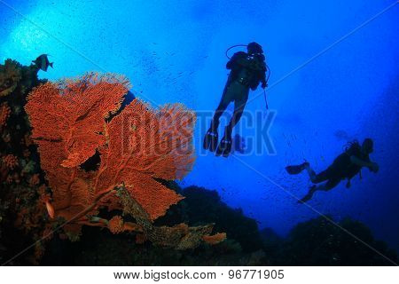 Scuba divers exploring coral reef with fish