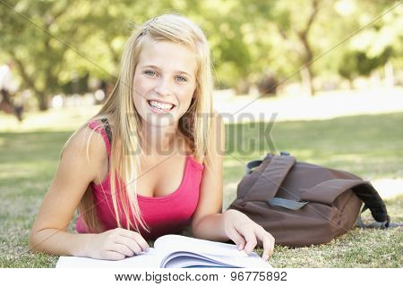 Female College Student Lying In Park Reading Textbook