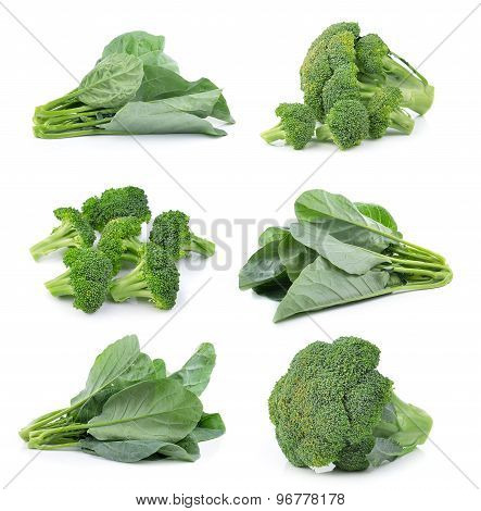 Chinese Broccoli And Broccoli On White Background