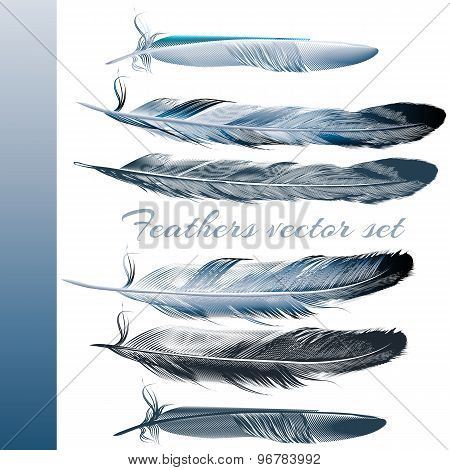 Set Of Vector Realistic Colorful Feathers