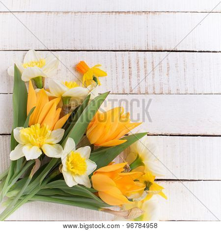 Background With Fresh Tulips And Narcissus