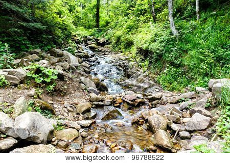 Mountain River Flowing In The Forest