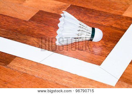 Shuttlecock next to badminton court base line