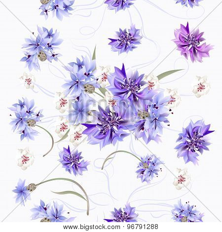 Floral Seamless Pattern With Blue Cornflowers