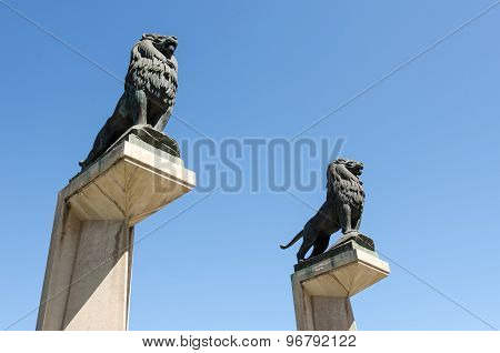 Lion Statues On The Stone Bridge