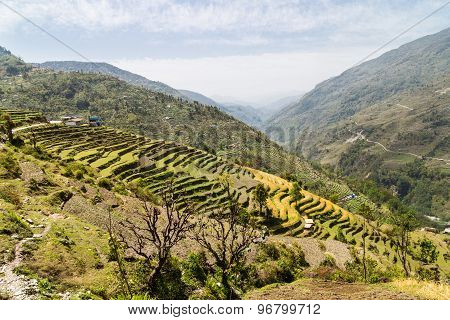 Ariel view of terraced plantation on hill slopes in Nepal