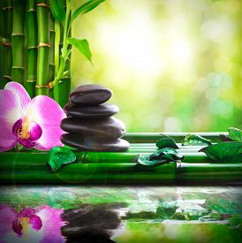 picture of bamboo leaves  - Stacked black stones orchids and leaves on bamboo - JPG