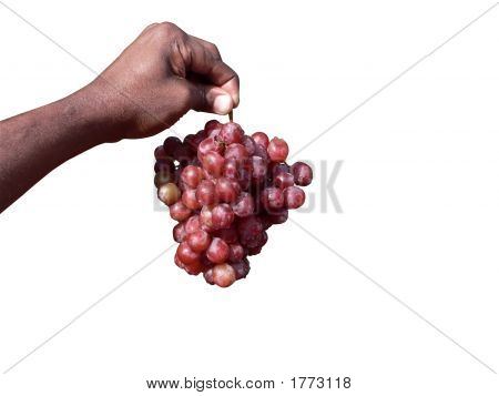 Hand Holding Red Grapes