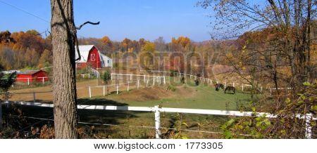 Horse Farm In Fall