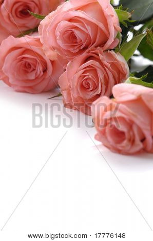 Bunch of roses, More flowers in my portfolio