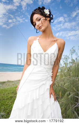 Bride In Wedding Gown On Beach