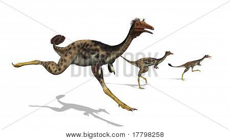 Mononykus Dinosaurs On The Run