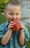 Young Boy Snacking On A Juicy Apple