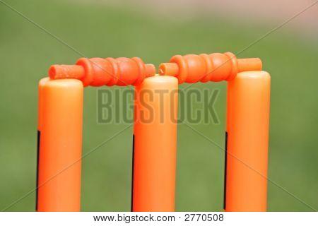 Plastic Cricket Wickets