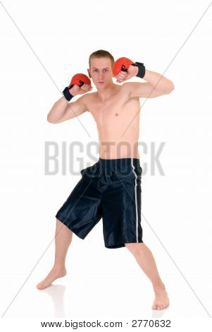 Young Male Thai Boxer
