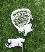 A White Lacrosse Goalie Stick Is Lying On A Green Turf Field With White Gloves Attached. poster