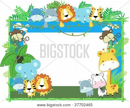 Animais cute Safari