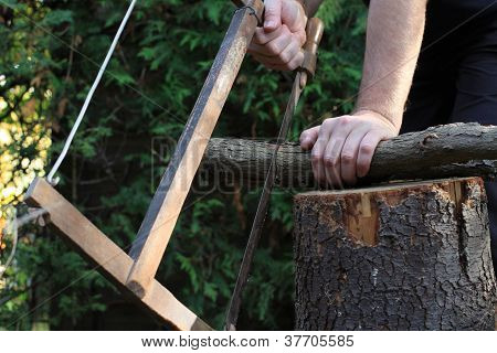 man saws a tree trunk