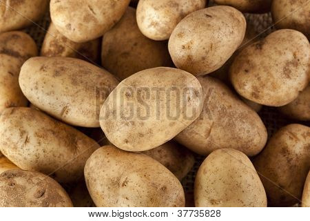 Fresh Organic Whole Potato