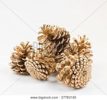 Five golden pines cones group