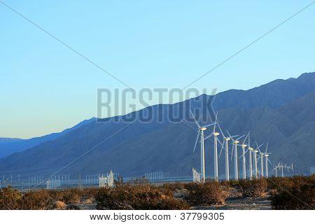 Wind Mills at Dusk, CA