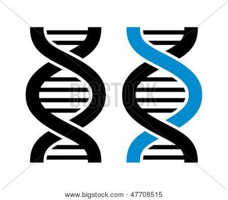 Vector de ADN