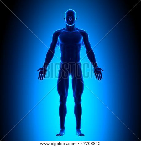 Full Body - Front View - Blue concept