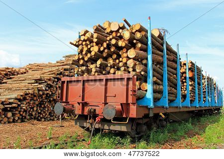 Transporting Wood By Train