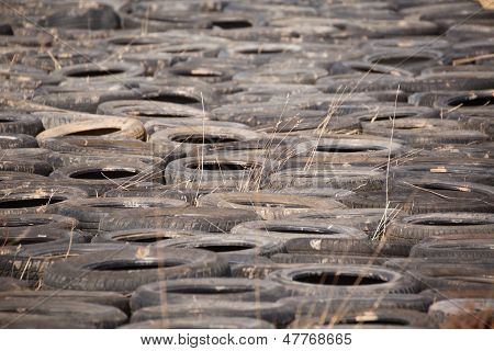 Dumped Old Car Tires