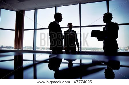 Shady image of a manager discussing business matters with her subordinates