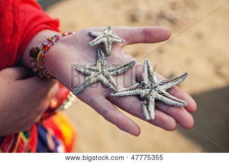 Three Dead Starfish On A Female Palm